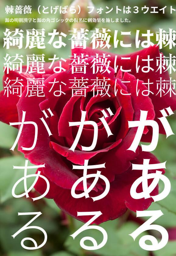 (数字)棘ゴシック刺玫瑰字体