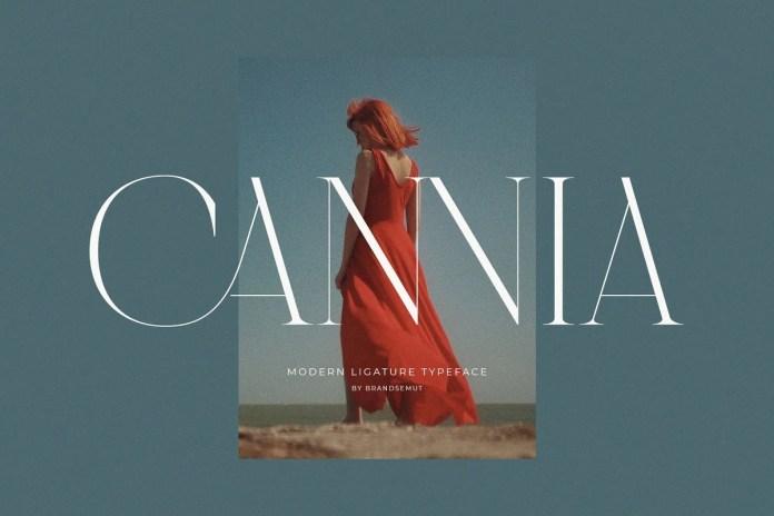 一款衬线英文字体Cannia下载